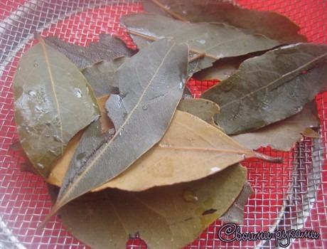 Лавровый лист для волос рецепты